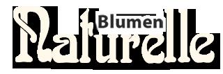 Logo von Blumen Naturelle Elzach mit Link zur Homeseite
