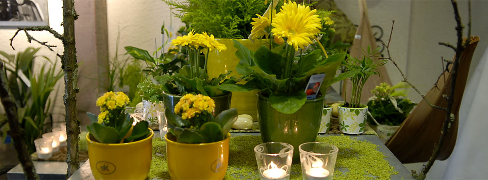 Blumen Naturelle  Elzach - Arrangements Blumenschmuck