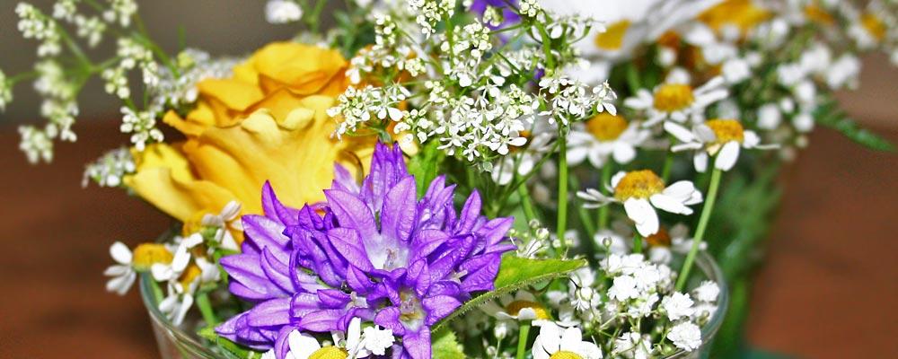 Blumen Naturelle  Elzach - Blumenversand